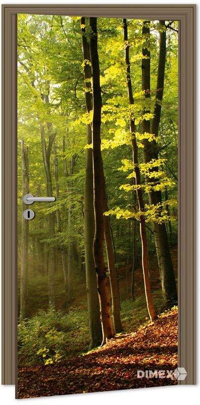 Fototapeta na dvere les