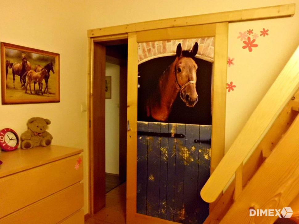 Fototapeta nadvere - stajňa, koník