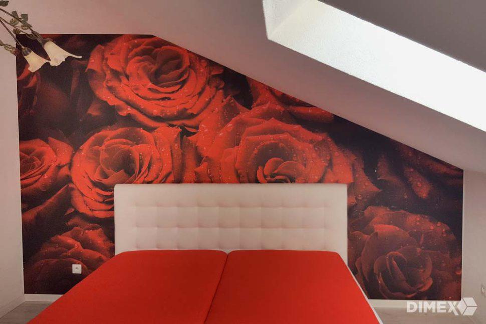 Červené ruže fototapeta